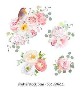 Spring delicate bouquets and cute robin bird vector design objects. Peachy and pink roses, peony, carnation, orchid, white poppy, ranunculus flowers, eucalyptus. All elements isolated and editable.