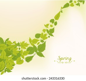 spring fall leaves background