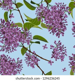 Spring floral background. Branch of a blossoming Lilac seamless pattern. Blue background.