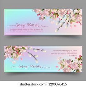 Spring Floral Banners. Abstract background with plum or cherry blossom and pussy willow branches