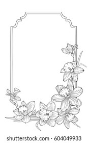 Spring floral border frame template with decorated corner. Daffodils narcissus flowers. Black and white vector design illustration for card, print, invitation, greeting.