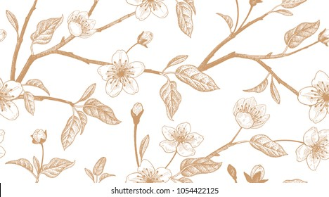 Spring  floral vintage seamless pattern with Japanese cherry. Branches, leaves and flowers of the sakura tree. Oriental style. Vector illustration art. Hand drawing. Sketch. Gold and white blackground