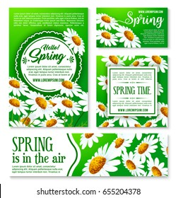 Spring flowers banner and greeting card template. White flowers of daisy and chamomile with green leaf cartoon poster for Hello Spring concept and springtime season celebration themes design