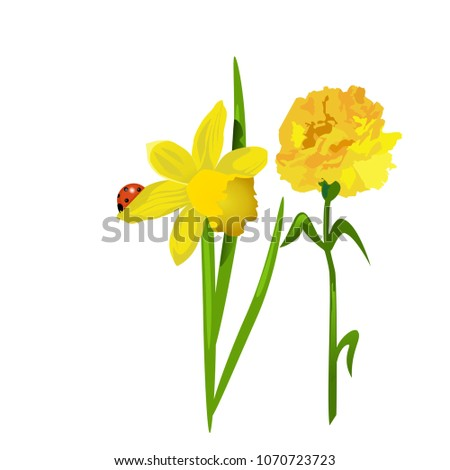 Spring flowers daffodils carnations sitting on stock vector royalty spring flowers daffodils and carnations sitting on a leaf ladybug mightylinksfo