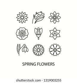 Spring flowers flat line icons set -  narcissus, crocus, lily of the valley, flax, snowdrop. Vector illustration.
