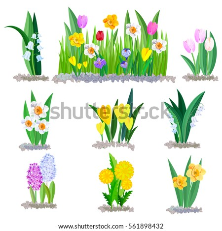 Spring flowers growing garden icons borders stock vector royalty spring flowers growing in the garden icons and borders elements isolated on white mightylinksfo