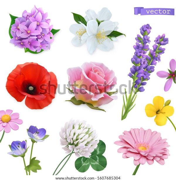 Spring flowers. Lilac, jasmine, poppy, rose, lavender, clover, chamomile. Vectorized image. Miscellaneous 3d realistic vector objects. Nature icon set