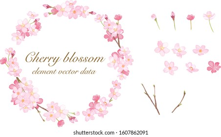 Spring flowers: Sakura round frame and elements set. Watercolor illustration trace vector