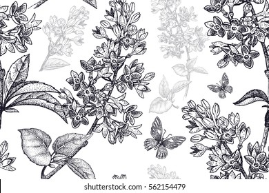 Spring flowers seamless floral pattern. Hand drawing garden plants lilac, butterfly black on white background. Vector vintage illustration. For wrapping, fabric, fashion, paper, packaging, textile.