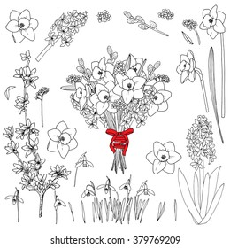 Spring flowers - vector hand drawn set. Spring flowers bouquet,  Daffodil, Hyacinthus, Snowdrop, Willow, Forsythia, Golden bells, Forget-me-not . Isolated on white background.