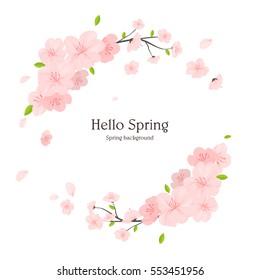 Spring frame illustration