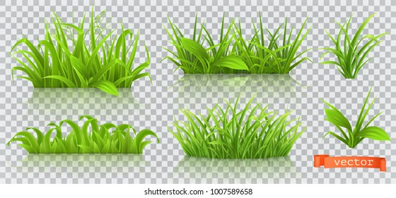 Spring grass 3d vector