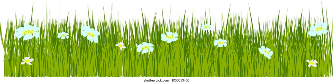 Spring grass and flowers border, Easter greeting card decoration element, flat vector illustration isolated. Easter decoration element with spring grass and meadow flowers