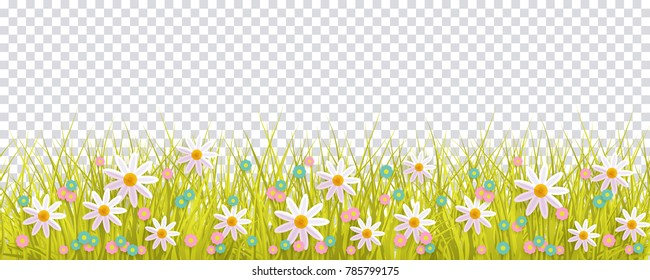 Spring grass and flowers border, Easter greeting card decoration element, flat vector illustration isolated on transparent background. Easter decoration element with spring grass and meadow flowers