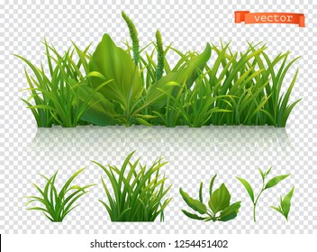 Spring. Green grass, 3d realistic vector icon set