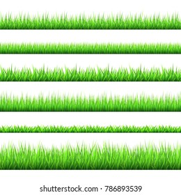 Spring green grass  borders  set  isolated on white background. Horizontal banners. Vector texture.