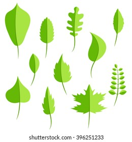 Spring green leaves in flat style vector set. Oak leaf, chestnut leaf, maple, birch and acacia leaves. - Shutterstock ID 396251233