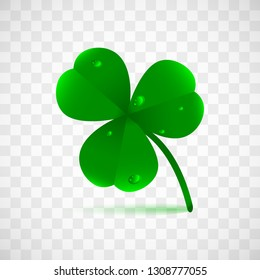 Spring green plant fhree leafed clover with dew, raindrops or waterdrops isolated on transparent background. Saint Patrick's holiday object