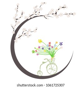 spring greetings. Flowers and vintage Bicycle. Cherry blossoms