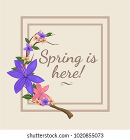 Spring is here illustration with double simple frame. Beautiful floral card design for spring . Designed with nice purple, pink, flowers on branch. Good for invitations card, web banner, backgrounds