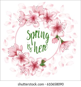 Spring is here vector card or banner with japanese cherry blossom. Pink sakura flowers wreath, round frame, border for green text. Flying petals on white background. Seasonal poster with tree blooming