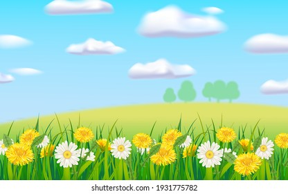 Spring landscape rural countryside, blooming daisies dandelions, rural nature. Panorama springtime green fields, blue sky. Vector background