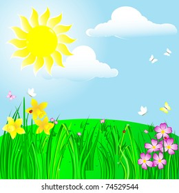Spring landscape with sun; flower and ladybirds. Vector.