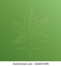 Spring leaf vector illustration