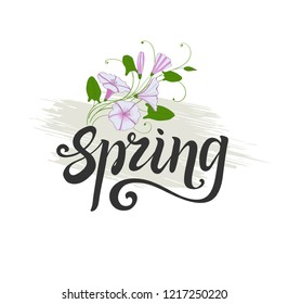 Spring lettering. decorative element convolvulus bouquet. White and pink flowers bindweed.