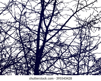 Spring nature background. Branches of trees. Dark blue tones. White sky.  Can be used for visit cards, eco texture, devices backdrops.