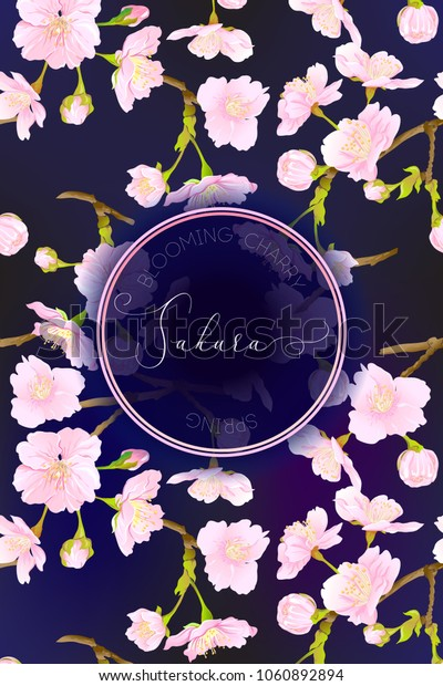 Spring night sky background with blossom brunch of pink sakura flowers. Template with place for text. Stock vectorillustration. Good for gift voucher, card, banner.
