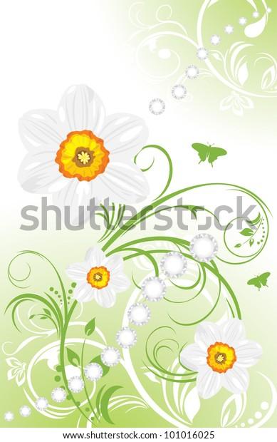 spring-ornamental-background-daffodils-v