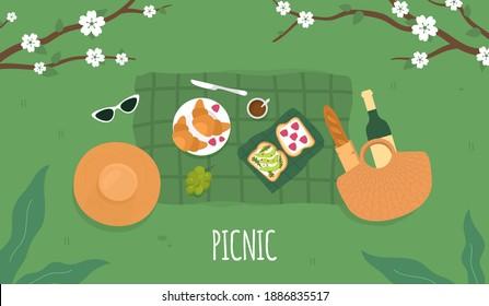 Spring Picnic. Avocado toast. Summer Picnic background. Vector