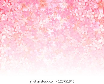 Spring pink cherry blossoms background