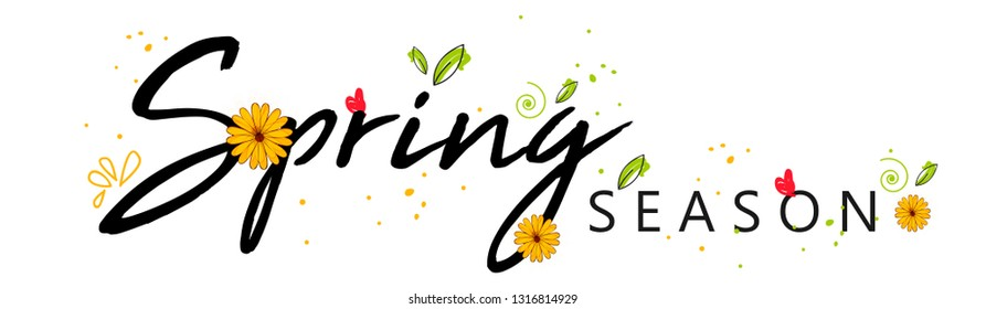 Spring sale offer background with beautiful colorful flower.