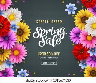 Spring sale and special offer vector banner background with colorful chrysanthemum and daisy flowers elements and spring season shopping promotional text. Vector illustration.
