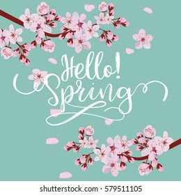 spring season background, pink cherry blossom on blue background.  vector illustration
