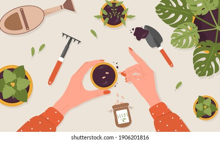Spring seedlings. Woman plants seeds in the ground. The view from the top. Vector illustration in flat cartoon style. Domestic orangery and care concept. Gardening hobby.