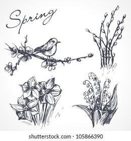 Spring set. Hand drawn illustrations