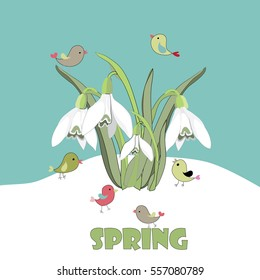 Spring snowdrops with cute little birds in the snow. Vector illustration on green background with Spring quote