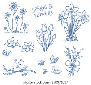 Spring and summer flower collection, with tulips, narcissus, singing bird on a pussy willow branch, butterflies and bee. Hand drawn vector illustration.