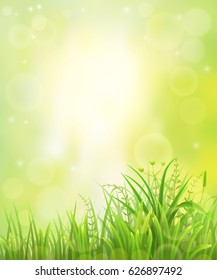 Spring or summer green grass natural background