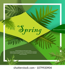 Spring or Summer Season Abstract Nature Banner Background. Bright tropical background with jungle plants. Exotic pattern with tropical leaves. Vector Illustrations & Clipart.