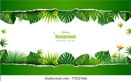 Spring or Summer Season Abstract Nature Banner Background. Vector Illustrations & Clipart.