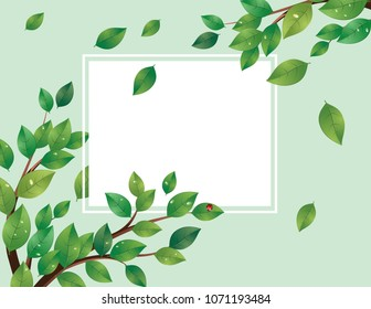 Spring, summer themed banner with green leaves on a tree branch.