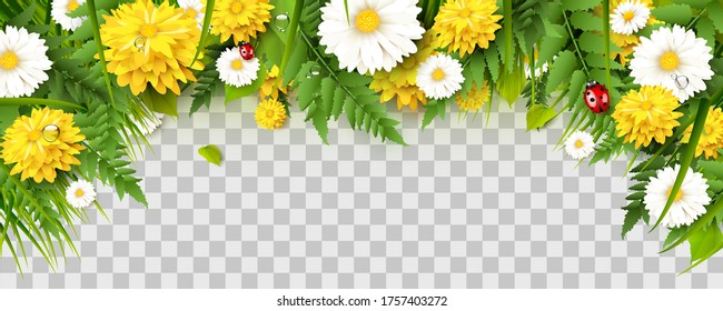 Spring time border with flowers, grass, fern and ladybugs on transparent background.