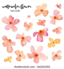 Spring Watercolor Vector Flowers