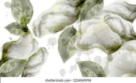 Spring white flowers bouquet watercolor background Vector. Roses, peony and delicate blooming flowers. Invitation card, wedding ceremony, delicate postcard, Women day greeting