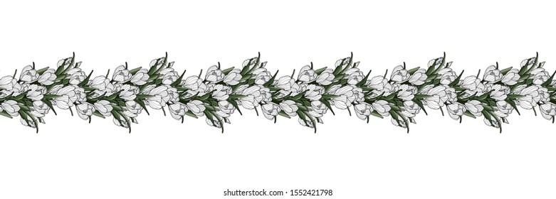 Springtime seamless floral decoration border. Hand drawn flower. Botanical illustration with crocus flower