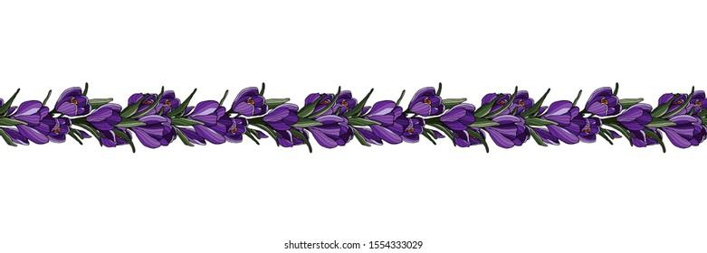 Springtime seamless floral decoration border. Hand drawn flower. Botanical illustration. Crocus